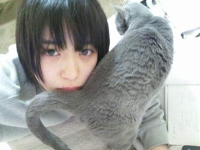 猫と森川葵