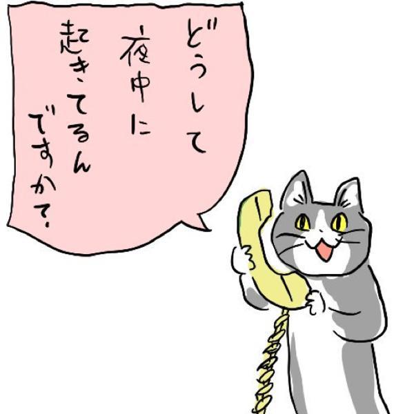 どうして 猫