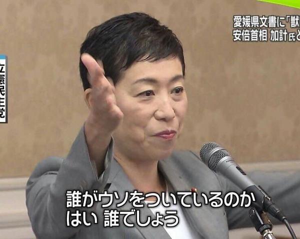 小学校 柴田 東須磨