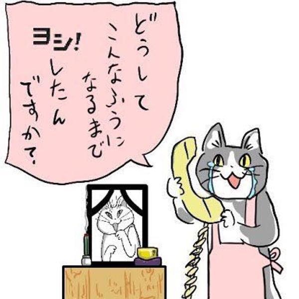 現場猫のお題一覧 , ボケて(bokete)