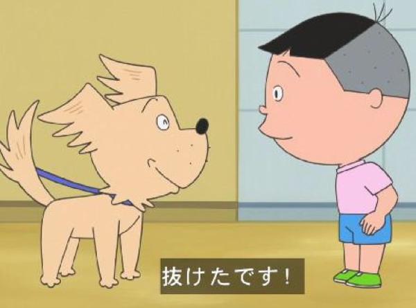 いささか先生の犬